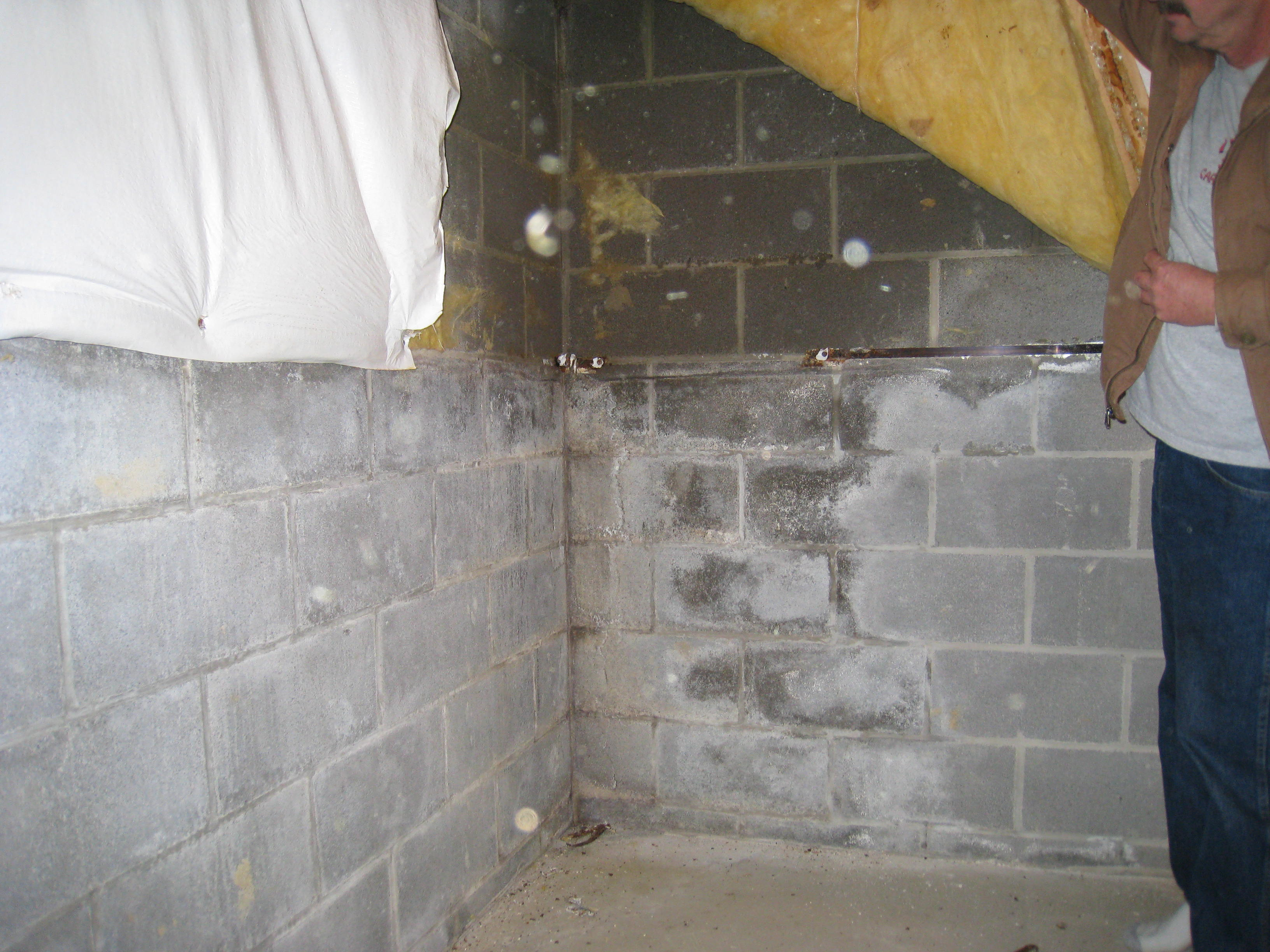 dampness in your basement walls what it could indicate