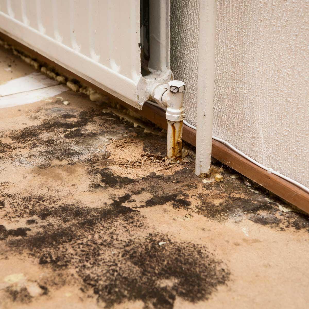 Stamford, CT | Budget Dry Waterproofing