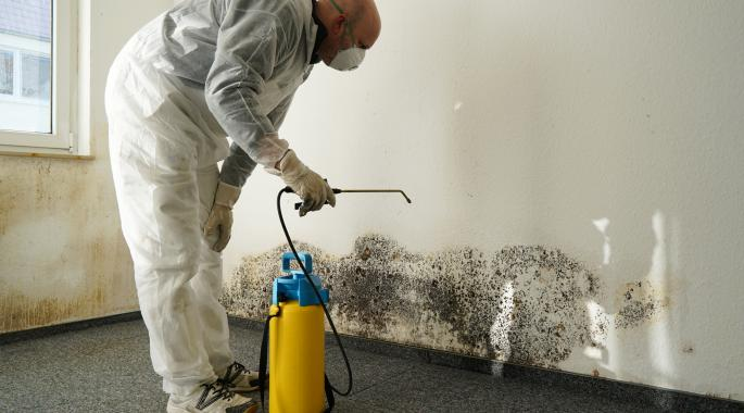 West Hartford, CT | Mold Remediation | Budget Dry Waterproofing